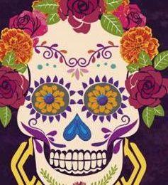 Zoom sur la tournée au Mexique